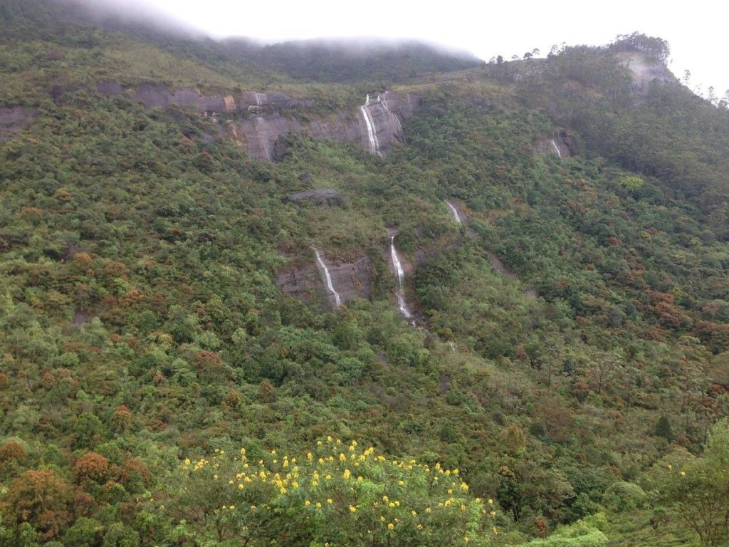 Protect Nature Sri Lanka Adams Peak